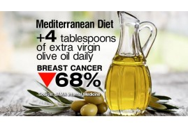 Olive Oil and Cancer
